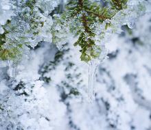 首都圏の水道管凍結対策