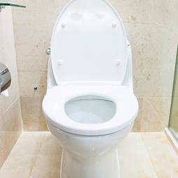 お相撲さんのトイレが気になる